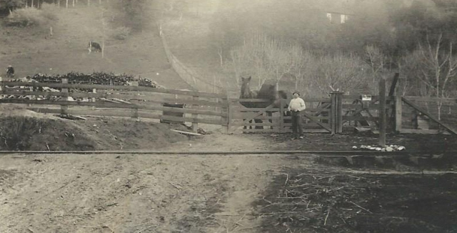 Circa 1912-13 Rideout Ranch photo. Courtesy Carol Harrington family collection.