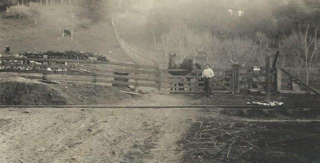 Circa 1912-13 Rideout Ranch photo. Courtesy Carol Harrington family collection.